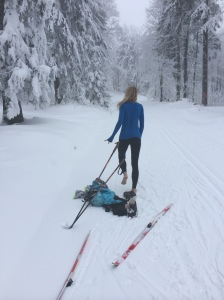ski10