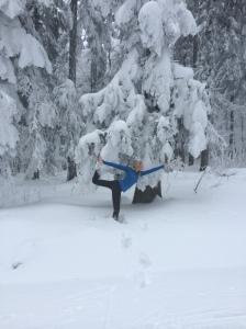 ski11